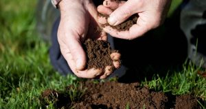 Intro to Building Better Soils