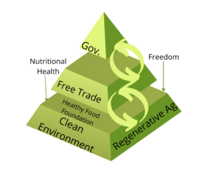 This image illustrates the ideal relationship between food systems, free trade, and government. A small government sits on top of a large free trade system that sits above an even larger food system.