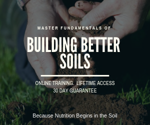 Master fundamentals of building better soils with our online class.