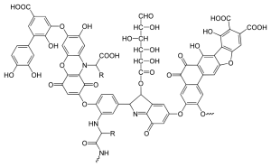 chemical structure of humic acid