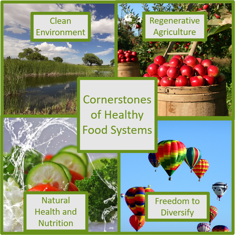 This image illustrates that healthy food systems are built on the four cornerstones of natural health and nutrition, freedom to diversify, clean environments, and regenerative agriculture.