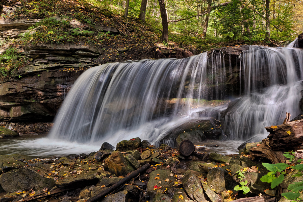 This image shows water cascading over a waterfall. Just as the water that falls is hard to reverse, actions in biology can trigger reactions that are difficult to change.